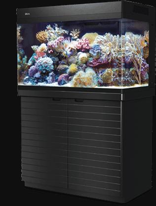 Red Sea Max 250 Aquarium