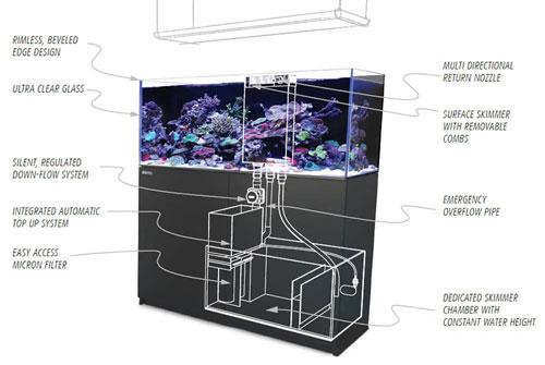 Reef-Ready Tank