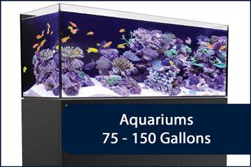 Aquariums 75-150G