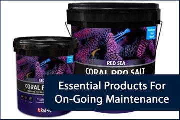 Aquarium Maintenance Essentials Header